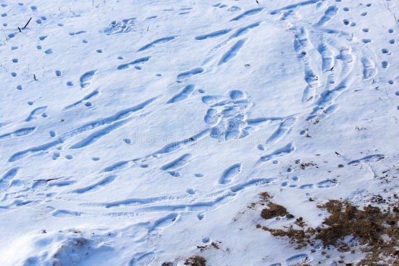 Empreintes de pas des chaussures sur la neige comme fond image stock