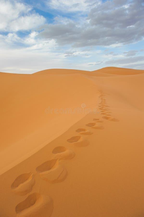 Empreintes de pas en dunes de sable d'erg Chebbi, Maroc photographie stock libre de droits