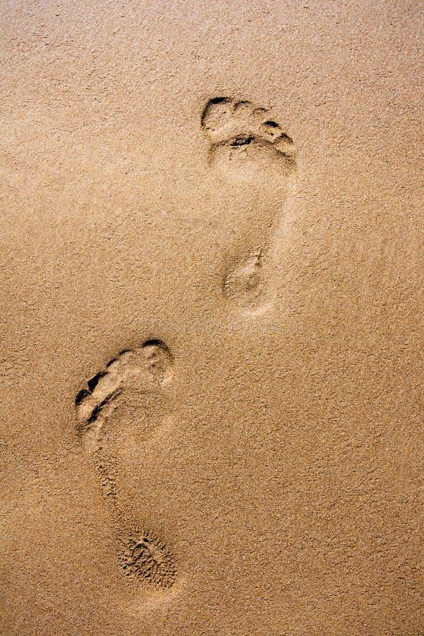 Empreintes de pas en sable humide photos libres de droits