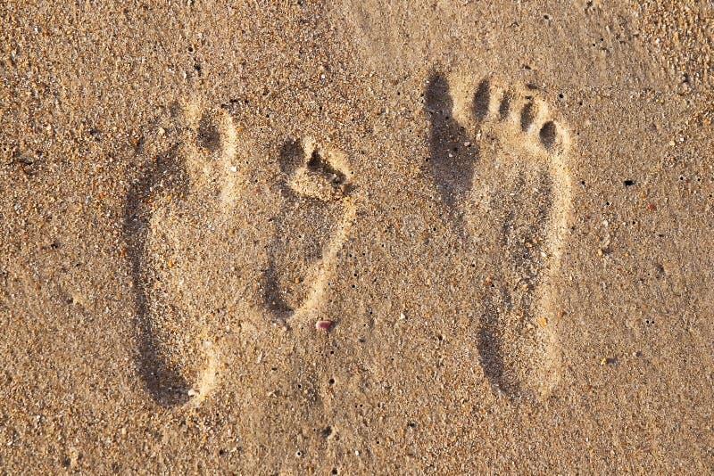 Empreintes de pas de famille dans le sable sur la plage image libre de droits