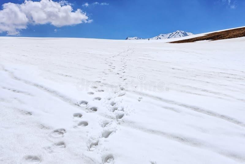 Empreintes de pas humaines de disparaition sur la neige dans les montagnes de Caucase d'hiver Horizontal scénique images libres de droits