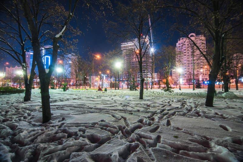 Empreintes de pas de Milou en parc lumineux par nuit photo stock