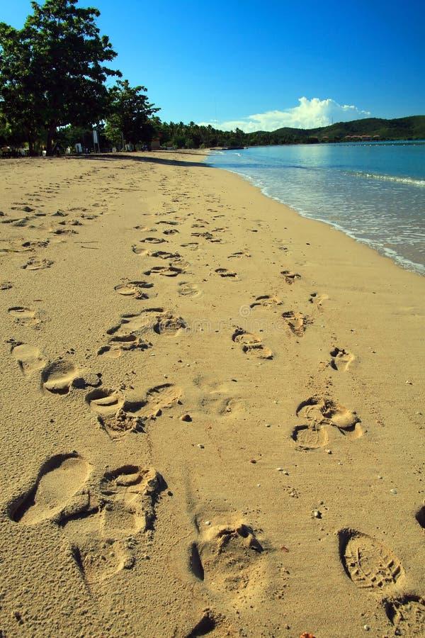 Empreintes de pas multiples sur le sable photo libre de droits