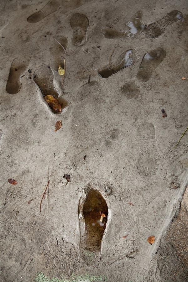 Empreintes de pas sur le plancher de ciment photographie stock libre de droits