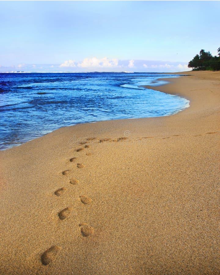 Empreintes de pas sur une plage abandonnée photographie stock
