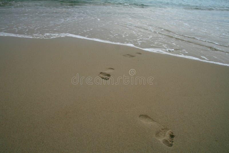 Empreintes de pas sur une plage sablonneuse photo stock
