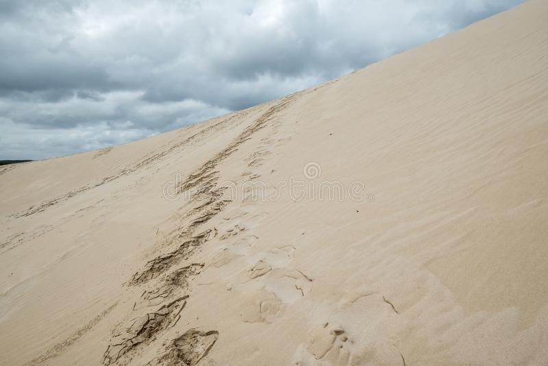 Empreintes de pas vers le haut de dune de sable raide, peu de Sahara, île de kangourou, Australie photographie stock libre de droits