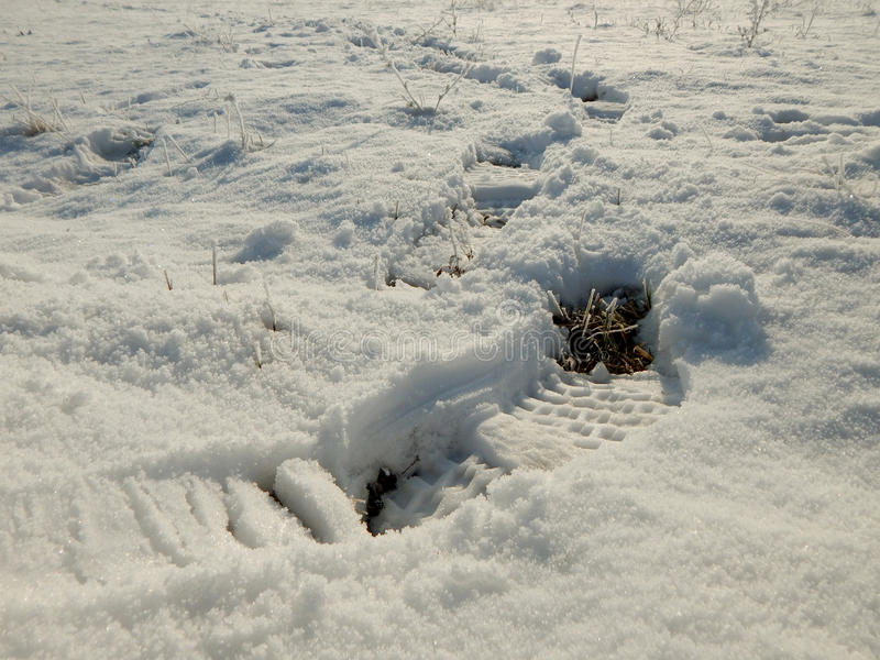 Empreintes du pied dans la neige image libre de droits