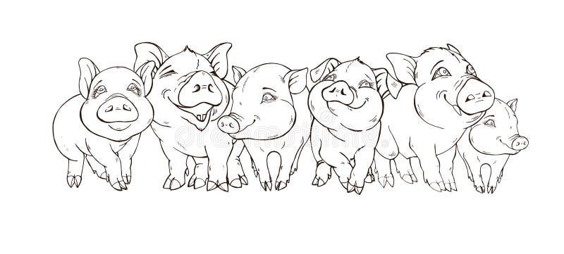 Empresa amigável de porcos bonitos ilustração royalty free