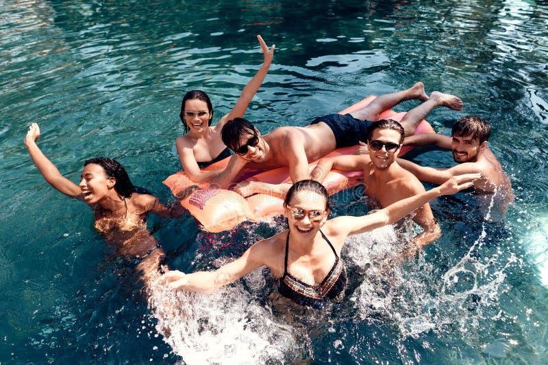 A empresa dos amigos despreocupados gasta a natação do tempo na associação Conceito do partido de piscina imagem de stock