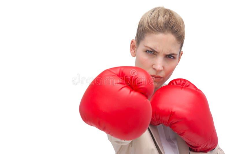 Empresaria con los guantes de boxeo foto de archivo libre de regalías