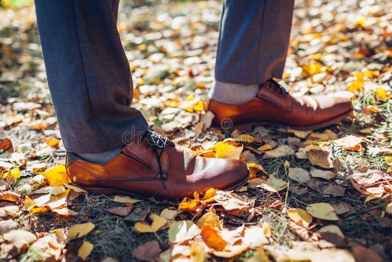 Empresario llevando zapatos en el parque de otoño. Calzado clásico de cuero marrón foto de archivo