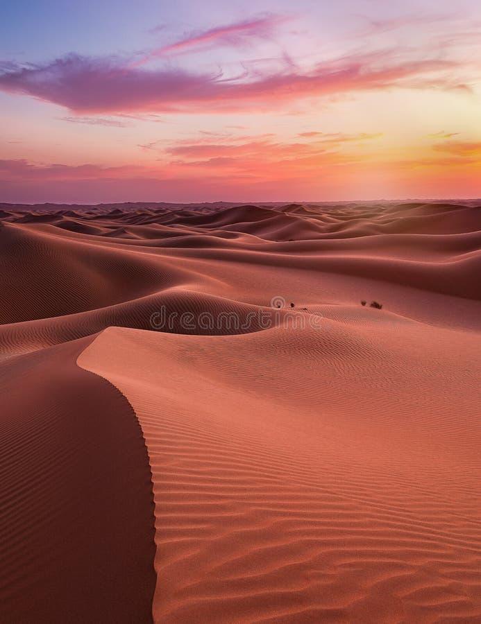 Empter Quarter Desert Dunes w Liwa, Abu Dhabi, Zjednoczone Emiraty Arabskie zdjęcie stock