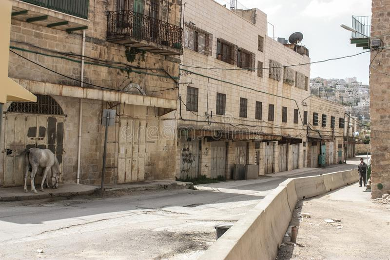Empty and abandoned street in the occupied city of Hebron. Abandoned Street of the city of Hebron in the occupied Palestinian territory with a horse on the side royalty free stock image