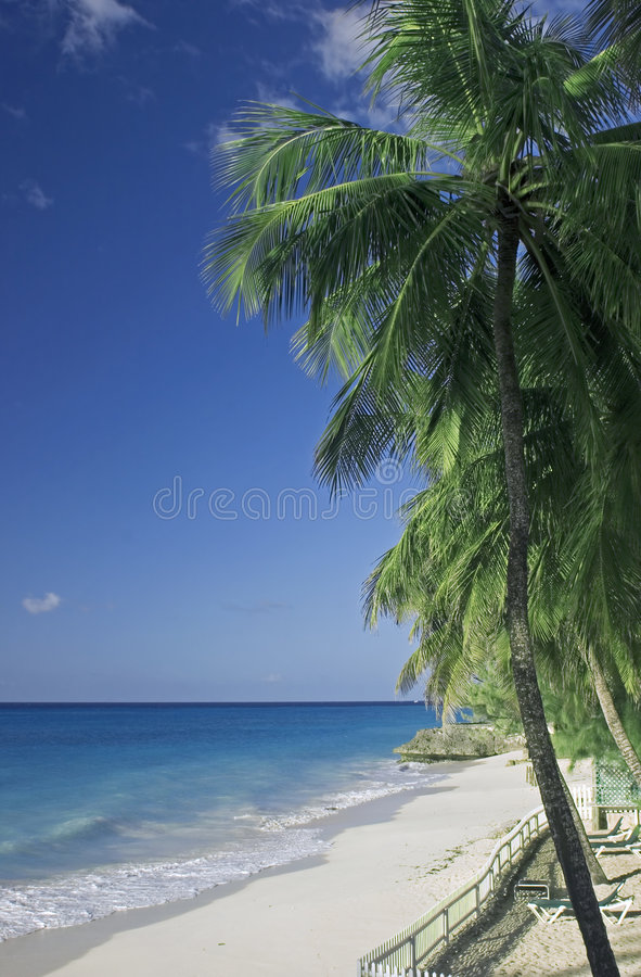 Empty beach royalty free stock photo
