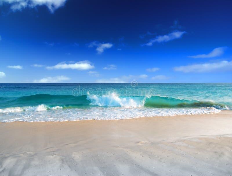 Empty beach. royalty free stock photography