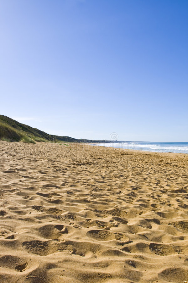 Download Empty beach stock photo. Image of summer, beach, backdrop - 7308554