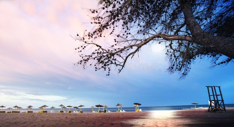 Empty beach. Ada Bojana - Montenegro coast, sandy beach before sunset royalty free stock photography