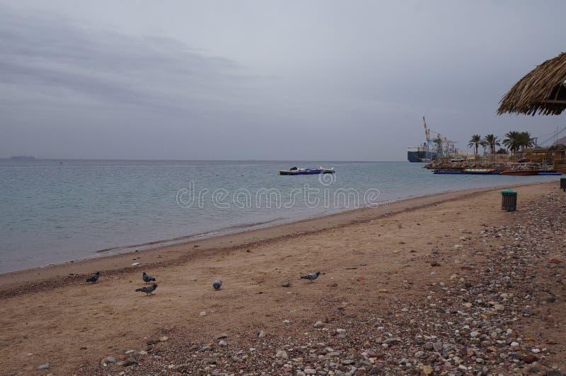 Empty beach near the Red sea. In winter stock photos