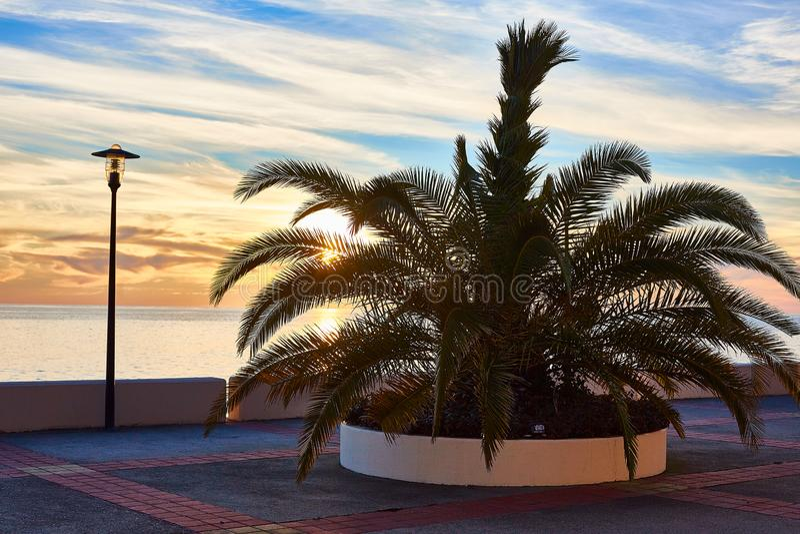 Empty beach with palm tree and lantern stock photos