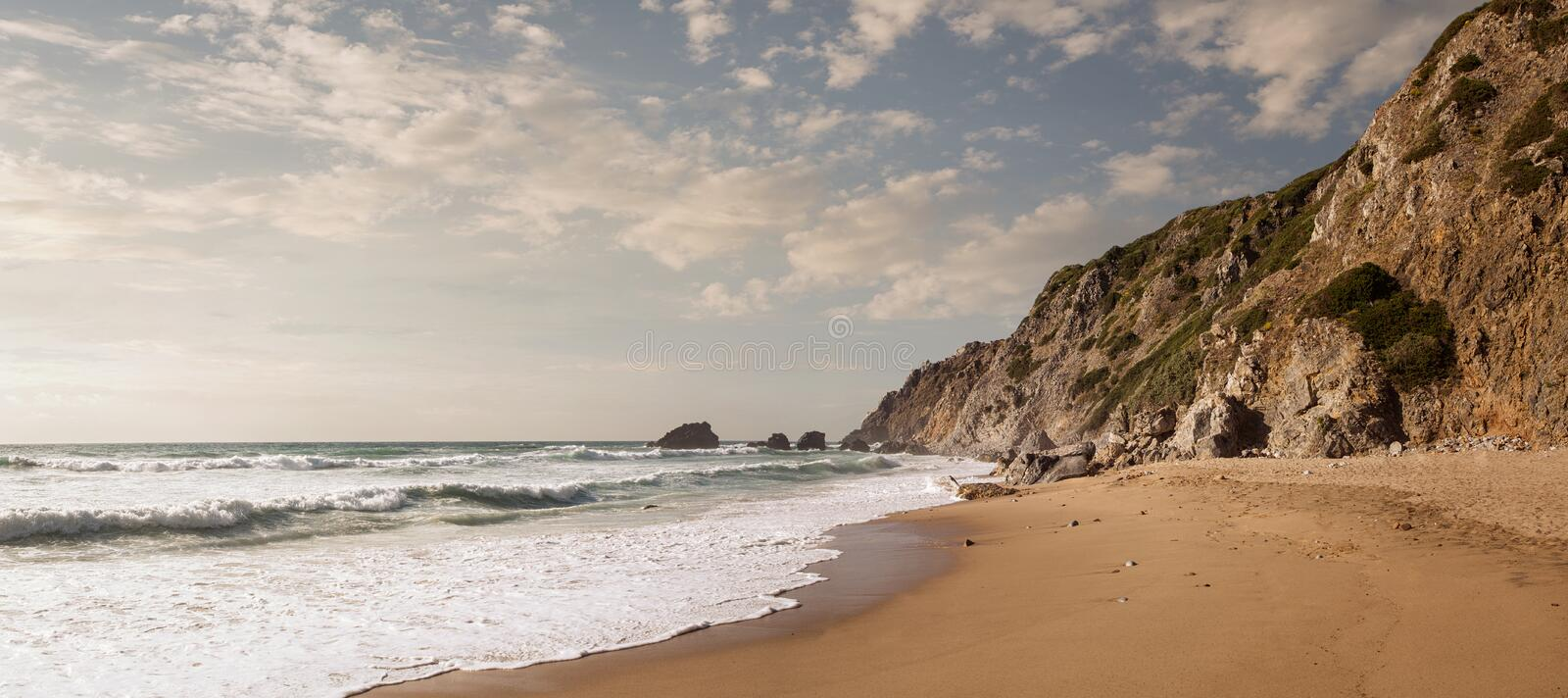 Empty beach at the sunset. Panoramic view of empty beautiful beach at the sunset with copy space royalty free stock images