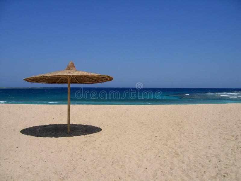Empty beach with sunshade royalty free stock image