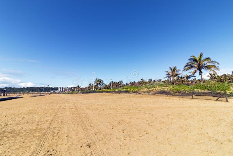 Empty Beach with Tire Tracks against Blue Sky royalty free stock photos