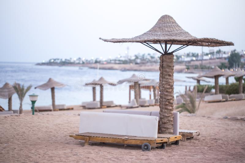 Empty beautiful beach with umbrellas and sunbeds in Egypt. The concept of travel and recreation stock image