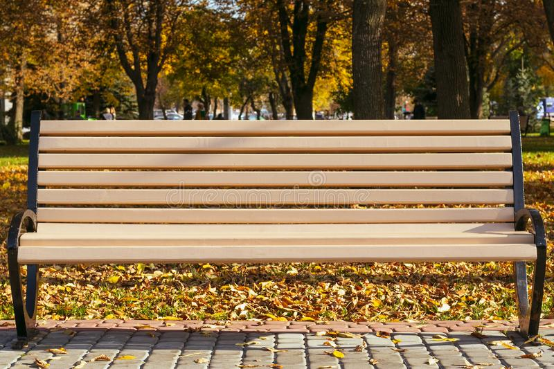 Empty bench in the park in autumn on a sunny day. Single ribbed bench outdoors in yellow fall foliage. royalty free stock photos