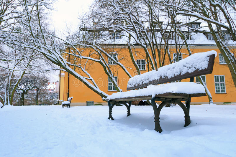 Empty bench in the park at snowy winter