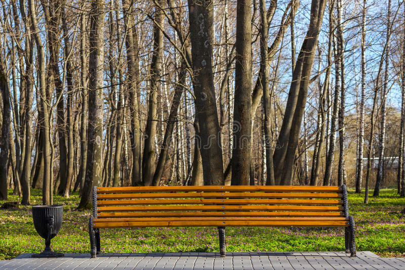 Empty bench in spring park stock photo