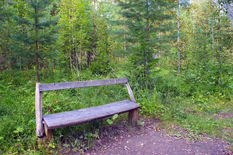 The empty bench, standing in the woods stock photo