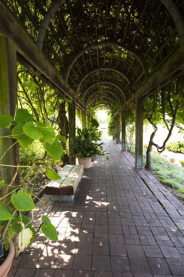 Free Empty Benches In Garden Tunnel And Shaped Pergola Stock Photo - 77994810