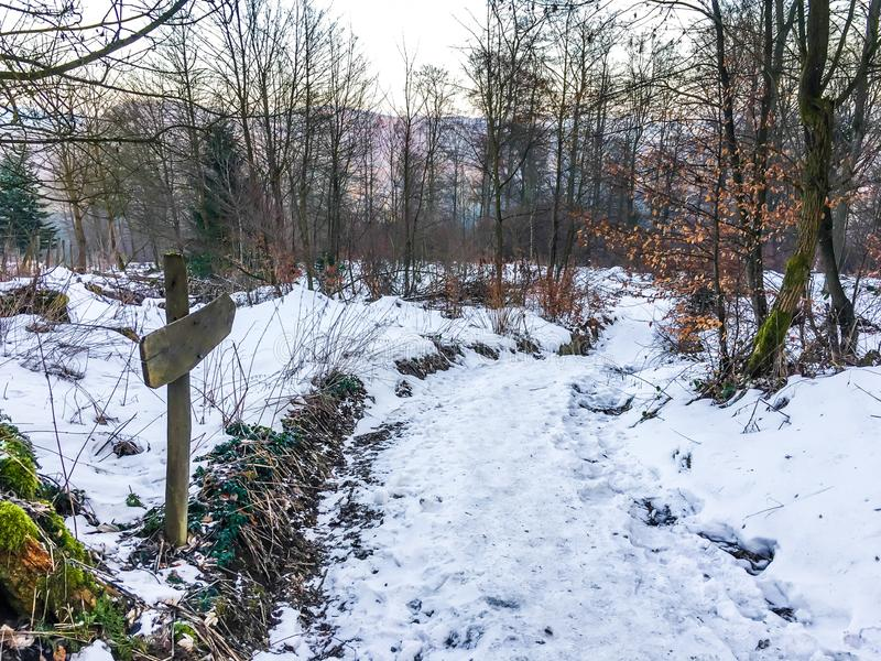Empty blank direction sign at a snowy walking road path in a forest landscape scene stock photos