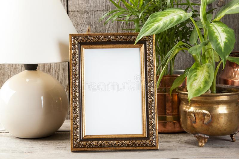Empty brass picture frame on wooden background. Empty brass picture frame, green plants and table lamp on old wooden gray textured background. Home decor and royalty free stock photo