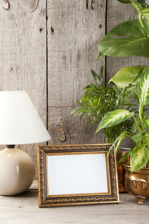 Empty brass picture frame on wooden background. Empty brass picture frame, green plants and table lamp on old wooden gray textured background. Home decor and stock photography
