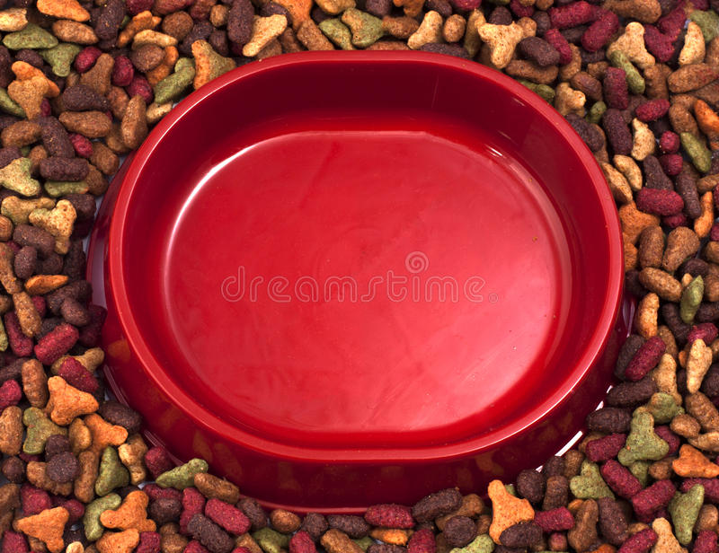 Empty cats or dogs bowl on the background of dry pet food. Empty pet s (cats or dogs) bowl on the background of dry pet food royalty free stock image
