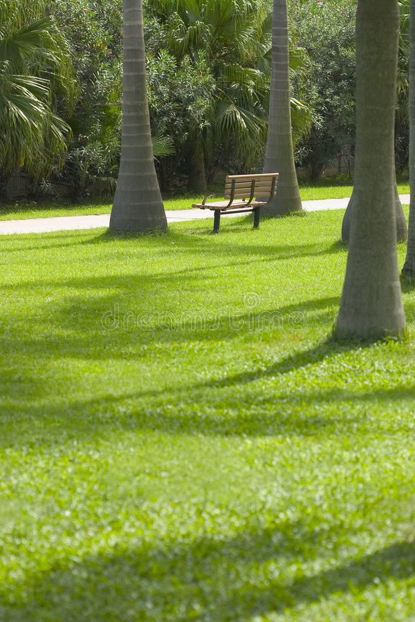 Download Empty Chair in a Park stock image. Image of trees, green - 33919