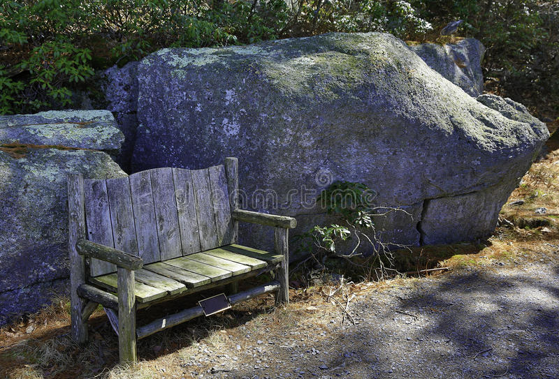 Download Empty Chair in the Woods stock image. Image of could - 39947793
