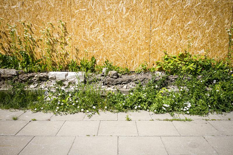 Empty chipboard fence. With a copy space also showing sidewalk and grass stock images