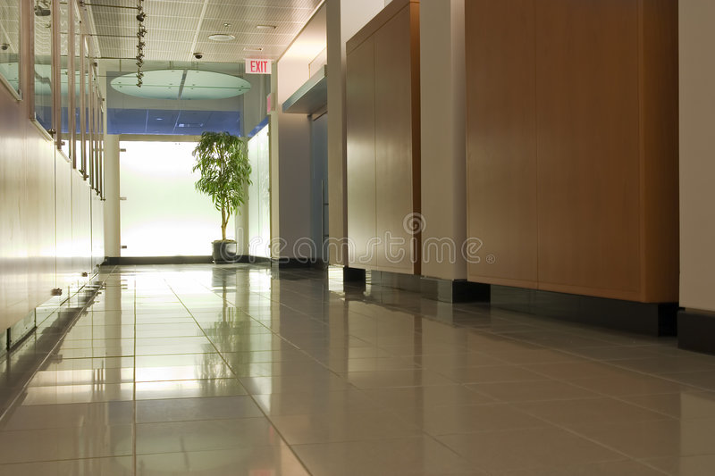 Empty corridor. With lights and the plant at the end stock photos