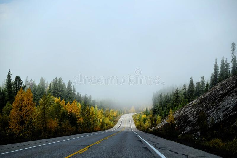 Empty Country Road in Fog stock image