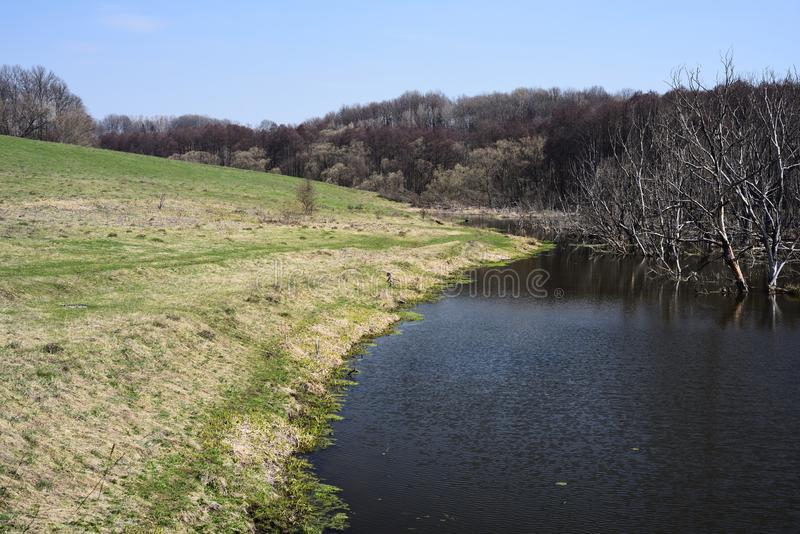 Empty countryside landscape. Small river bank and dry trees in water in sunny spring day royalty free stock photos