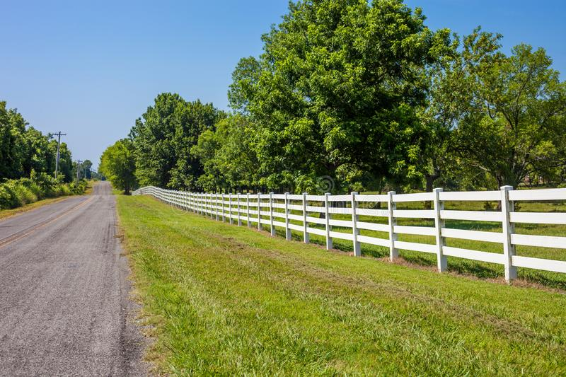 Empty countryside road with white fence and green trees royalty free stock photography