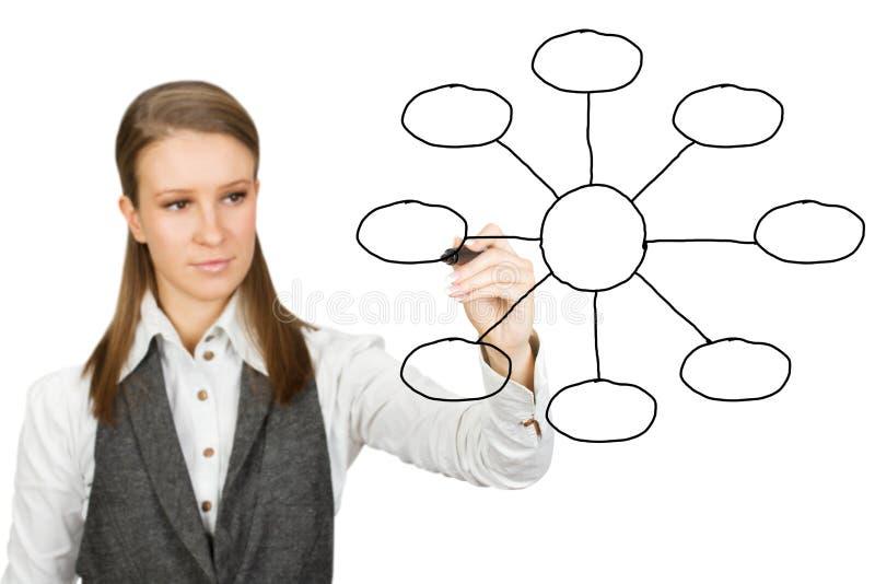 Download Empty diagram stock image. Image of organization, creativity - 17940601
