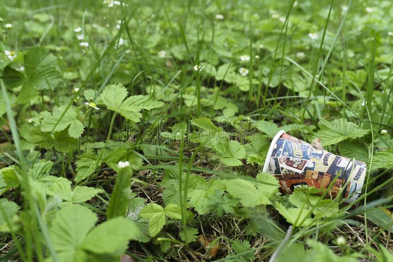 An empty drinking paper cup lies after the using in the bush beside the pavement, that is a kind of the environment pollution royalty free stock images