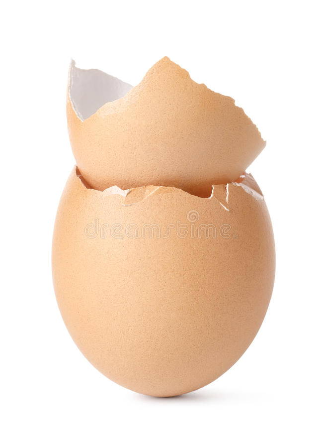 Empty eggs royalty free stock images