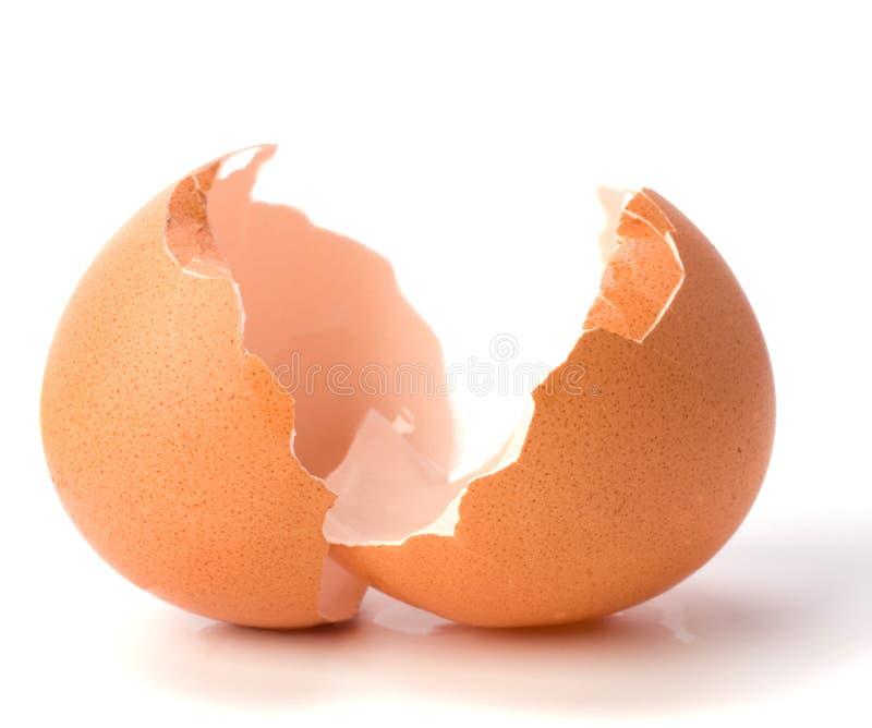 Empty eggshell royalty free stock photo