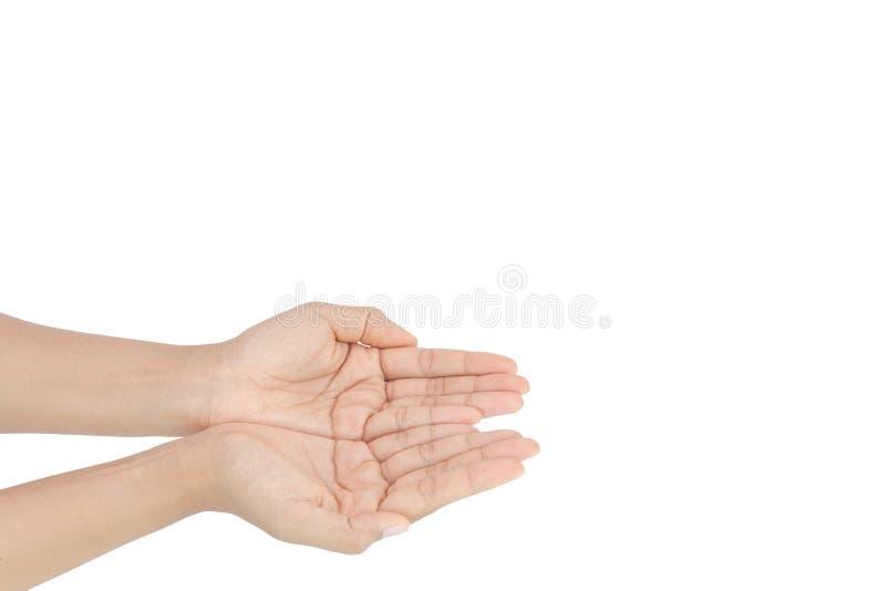 Empty female hand on white background royalty free stock image