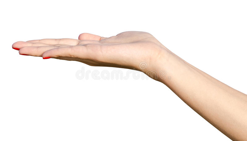 Download Empty Female Teen Hand stock image. Image of european - 32987297